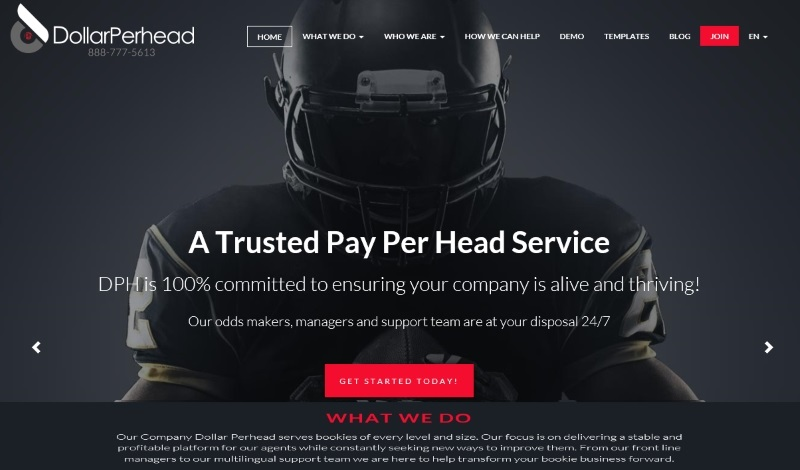 DollarPerHead.com Pay Per Head Review