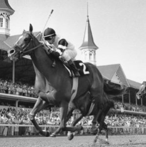 Affirmed 1978 Belmont Stakes Winner