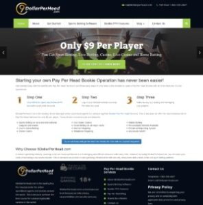 9DollarPerHead.com Sportsbook Pay Per Head Review