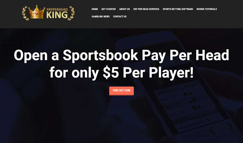 PayPerHeadKing.com Sports Betting PPH Review