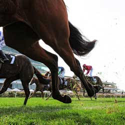 New Australian Gambling Tax Will Hurt Local Racing Market