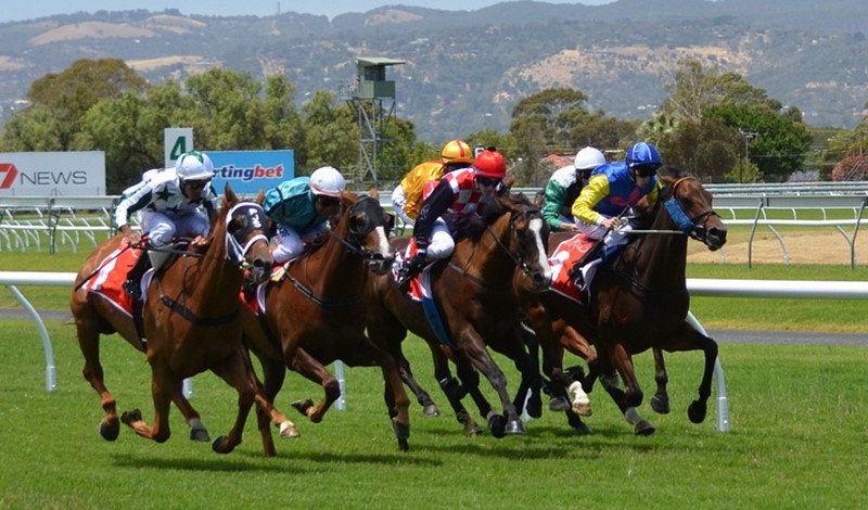 Horse Betting Strategy for First-Timer Derby Players