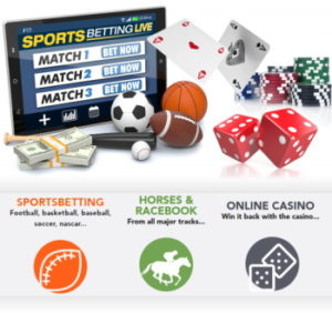 RealBookies.com Player and Agent Software Review