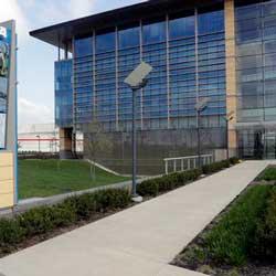 NCAA Division I Sports Restarts on June 1