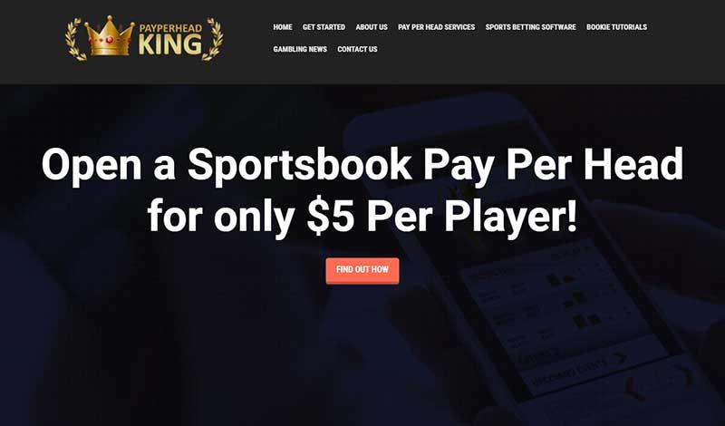 PayPerHeadKing.com Sports Betting PPH Review