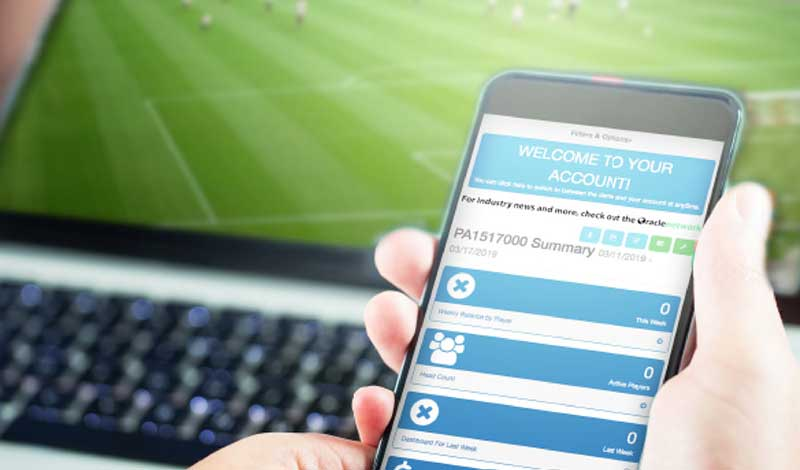 Best Online Sportsbook Tools