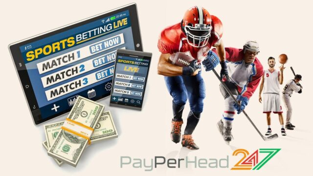 PPH Services Provided by PayPerHead247