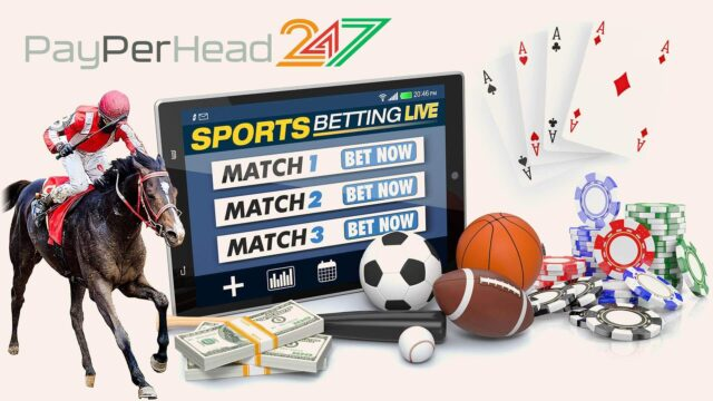 PayPerHead247 PPH Agents Software